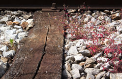 Train track wood planks close up. Train track with old wood planks and red grass between them Stock Photography
