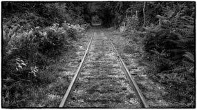 Train Tracks Stock Photos
