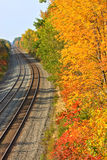 Train Tracks in Autumn Royalty Free Stock Image