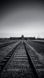 Train tracks, Birkenau Concentration Camp, Poland Royalty Free Stock Photo