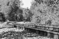 Train tracks in a black and white autumn landscape Stock Photo