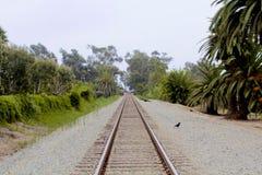 Train tracks Carpinteria California Royalty Free Stock Photo