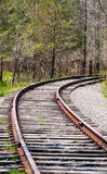 Train tracks curving right into trees. Royalty Free Stock Image