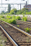 Train Tracks in depot Stock Photos