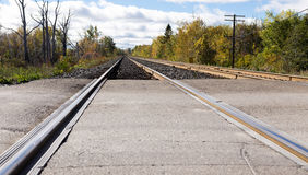 Train tracks edged by trees. Train tracks edged by trees leading off into the distance stock photo