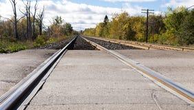 Train tracks edged by trees. Stock Photo
