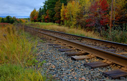 Train Tracks in Fall. Train tracks heading down the road in glorious fall colors Royalty Free Stock Photos