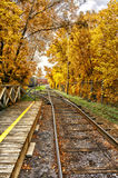 Train tracks in fall. Train tracks running through trees in fall color Royalty Free Stock Images