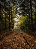 Train tracks through a German Forest in Autumn royalty free stock images