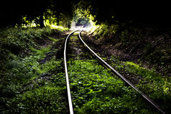 Train tracks through green trees Stock Photo