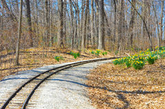 Train Tracks. Miniature train tracks through the forest during the spring time while the daffodils are in full bloom at the Milwaukee County Zoo in Wisconsin stock photo