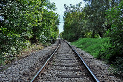 Train Tracks. Surrounded by trees stock images