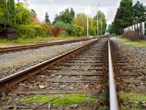 Train tracks. And the autumn trees in the city Royalty Free Stock Photo