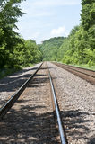 Train tracks through the woods. Two sets of train tracks run through lush green forest Stock Photography