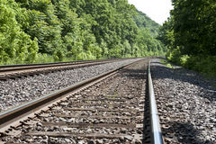 Train tracks through the woods. Two sets of train tracks run through lush green forest Royalty Free Stock Image