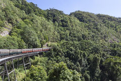 Train. S run in Australia's Cairns Forest stock images