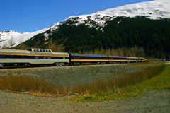 Train on Trans Alaska Railroad Stock Images