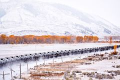Train transporting tank cars. Season changing autumn to winter. royalty free stock photo