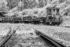 Train Transporting wood Stock Photo
