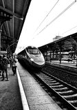 Train travel. Artistic look in black and white. Royalty Free Stock Image