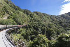 Train travel, Cairns. Trains run in Australia's Cairns Forest stock photography