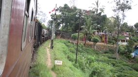 Train travels through thick green jungle. At India stock footage
