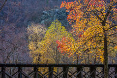 Train Trestle in Autumn Royalty Free Stock Photos