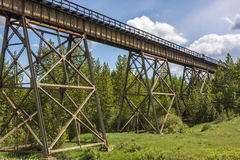 Train Trestle in Trees Royalty Free Stock Photo