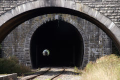 Train in the tunnel Royalty Free Stock Photo