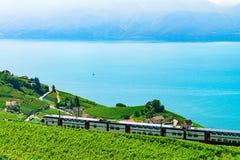 Train at Vineyard Terraces Lavaux at Lake Geneva Alps. Lavaux, Switzerland - August 30, 2016: Train at Vineyard Terraces in Lavaux at Lake Geneva and Swiss Alps stock image