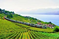 Train at Vineyard Terraces Lavaux near Lake Geneva Swiss Alps. Lavaux, Switzerland - August 30, 2016: Running train at Lavaux Vineyard Terraces hiking trail near stock images