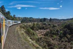 Train voyageant par le Nouvelle-Zélande idyllique Image libre de droits
