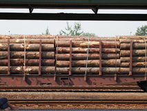 The train wagon loaded with timber. The train wagon loaded with spruce logs royalty free stock image