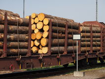 The train wagon loaded with timber. The train wagon loaded with spruce logs stock photo