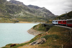 Train white lake Stock Image