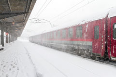 Train who arrived during a snow storm Royalty Free Stock Image