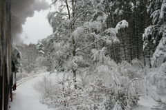 Train in winterlandscape. Steam Train Rasender Roland at Rügen in fresh snow Royalty Free Stock Photos