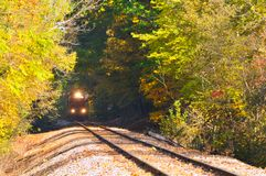 Train in woods Royalty Free Stock Photos