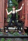 The train Royalty Free Stock Photos