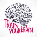 Train your brain. Beautiful card with a human brain and motivational quote. hand-drawn illustration Stock Images