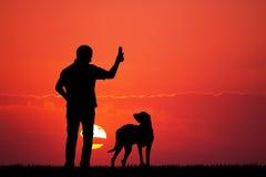 Trained dog Royalty Free Stock Photo