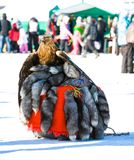 Trained eagle sitting on furs. In the background Royalty Free Stock Image