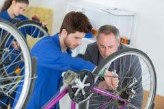 Trainee mechanic repairing bicycle stock image