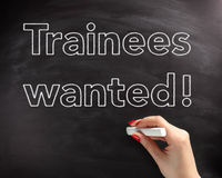 Trainees Wanted Phrase on Black Chalkboard Royalty Free Stock Photos