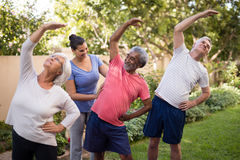 Trainer assisting senior people in exercising. Trainer assisting senior people while exercising at park Royalty Free Stock Photography
