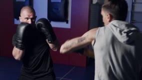 Trainer bildet Boxer in der Turnhalle aus, arbeitet Tritt und Verteidigung aus stock footage