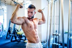 Trainer, bodybuilder working out the biceps and the abs in gym Stock Photography