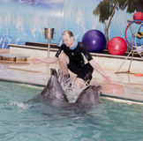 Trainer conducts singing dolphins in the Rostov dolphinarium Royalty Free Stock Photos