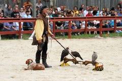Trainer demonstrates hawks abilitiesenai Royalty Free Stock Photo