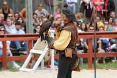 Trainer demonstrates hawks abilitiesenai Royalty Free Stock Photos